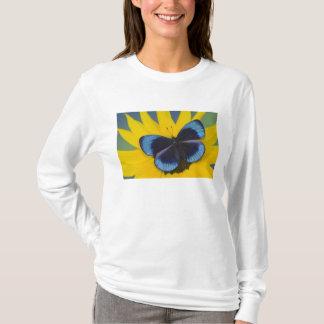 T-shirt Photographie de Sammamish Washington du papillon