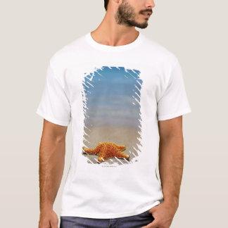 T-shirt Plan rapproché d'une étoile de mer de coussin