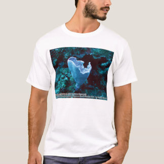 T-shirt Plicifera de Callyspongia (éponge azurée de vase)