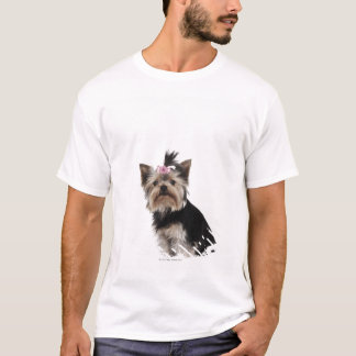 T-shirt Portrait d'un chien de Yorkshire Terrier