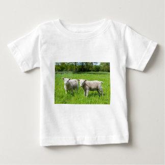 T-shirt Pour Bébé Deux moutons néerlandais blancs dans le pré vert
