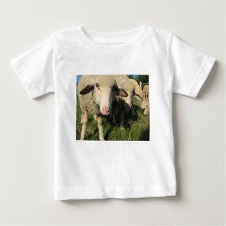 T-shirt Pour Bébé Moutons curieux