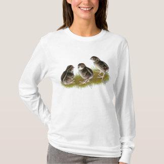T-shirt Poussins de cailles de Coturnix