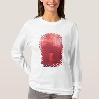 T-shirt Québec, Québec, Canada. Feux d'artifice chez Parc