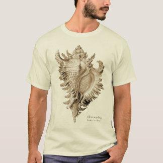 T-shirt Ramosus de Chicoreus (inflatus de Chicoreus).