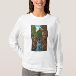 T-shirt Regard en bas de l'abîme d'Ausable de la caverne