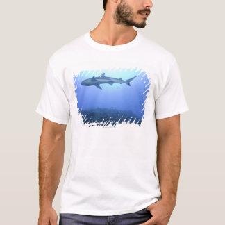 T-shirt Requin dans l'océan, vue d'angle faible