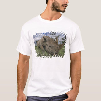 T-shirt Rhinocéros noir, bicornis de Diceros, Kenya