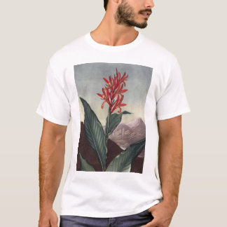 T-shirt RJ Thornton - roseau indien