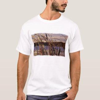T-shirt Roseau T