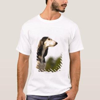T-shirt Saluki 2