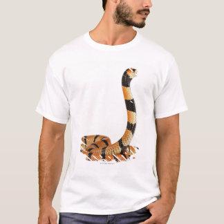 T-shirt Serpent de corail africain (lubricus d'Aspidelaps)