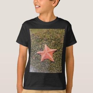 T-shirt starfish.JPG vivant