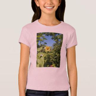 T-shirt Tee - shirt de TOURNESOL de COTTAGE