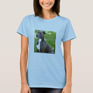 T-shirt terrier américain de pitbull