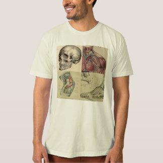 T-shirt tête, épaules, genoux et pièce en t d'orteils