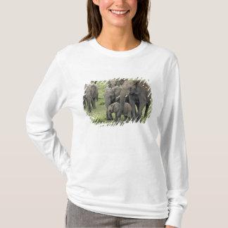 T-shirt Troupeau d'éléphant africain, africana de