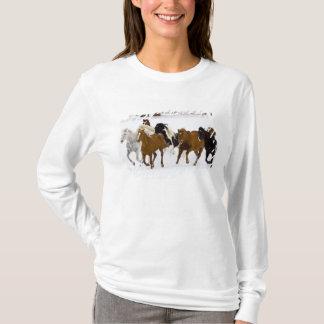 T-shirt Un hiver pittoresque des chevaux courants sur