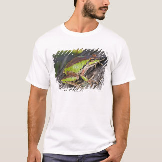 T-shirt Un treefrog Pacifique été perché sur un rondin