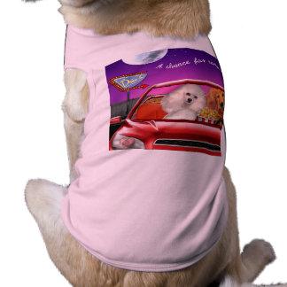 T-shirt Une occasion pour Romance