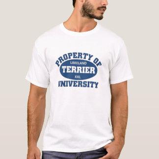 T-shirt Université de terrier de région des lacs