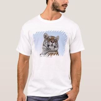 T-shirt Vue d'angle faible d'un tigre (Panthera le Tigre)