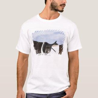 T-shirt vue de côté de cheval sellé