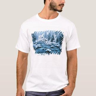 T-shirt WA, réserve forestière de Wenatchee, cascade
