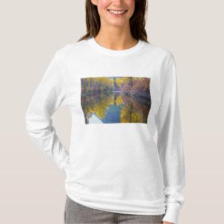 T-shirt WA, réserve forestière de Wenatchee, crique de
