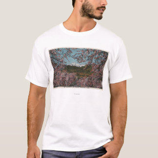 T-shirt Wenatchee, WAView de cachemire de Mt. avec des