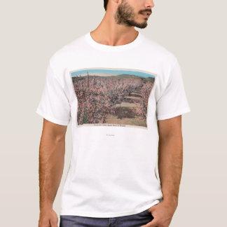 T-shirt Wenatchee, WAView des pommiers Dans la fleur