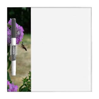 Table des messages de colibri tableau blanc effaçable à sec