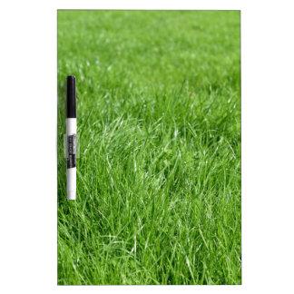 Tableau Effaçable À Sec Champ d'herbe verte