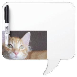 Tableau Effaçable À Sec Conseil sec d'effacement de chat