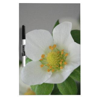Tableau Effaçable À Sec Fleur de fraise