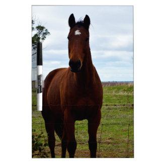 Tableau Effaçable À Sec Grand cheval magnifique de Brown,