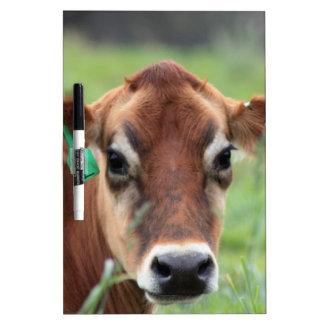 Tableau Effaçable À Sec Vache du Jersey