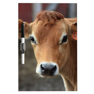 Tableau Effaçable À Sec Vous ne me pensez pas suis jolie vache du Jersey