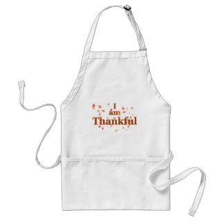 Tablier je suis reconnaissant