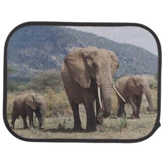 Tapis De Sol Éléphant de mère marchant avec le veau d'éléphant