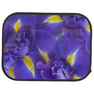 Tapis De Sol Fleurs d'iris