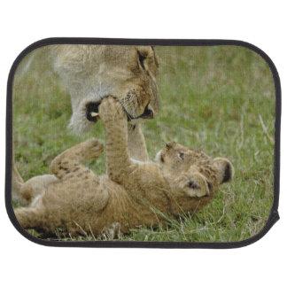 Tapis De Sol Petit animal de lion jouant avec le lion femelle,