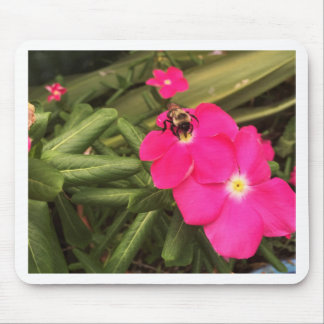 Tapis De Souris abeille