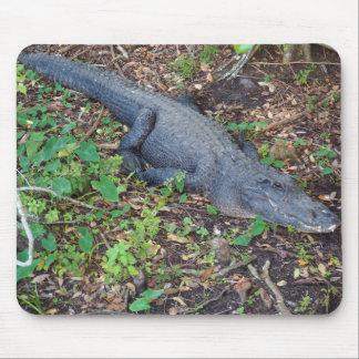 Tapis De Souris alligator adulte