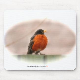 Tapis De Souris Américain animal Robin d'oiseau