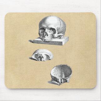 Tapis De Souris Anatomie de crâne et d'os