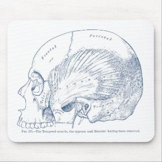 Tapis De Souris Anatomie humaine vintage dessinant le bleu