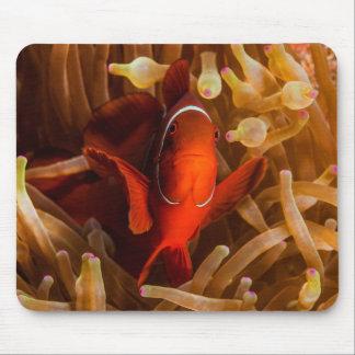 Tapis De Souris Anémone Clownfish la Grande barrière de corail de