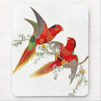 Tapis De Souris Animaux de faune d'oiseaux de perroquet de