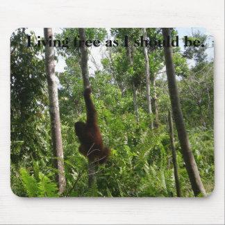 Tapis De Souris Animaux sauvages libres vivants dans l'habitat